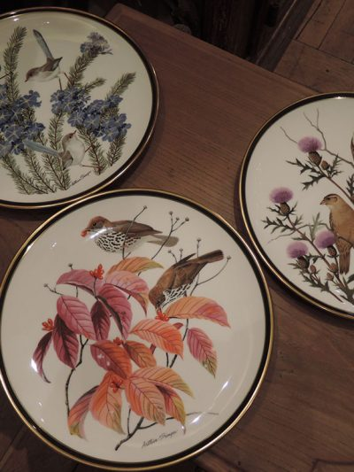 "ENSEMBLE DE 11 ASSIETTES ""SONGBIRDS OF THE WORLD"""