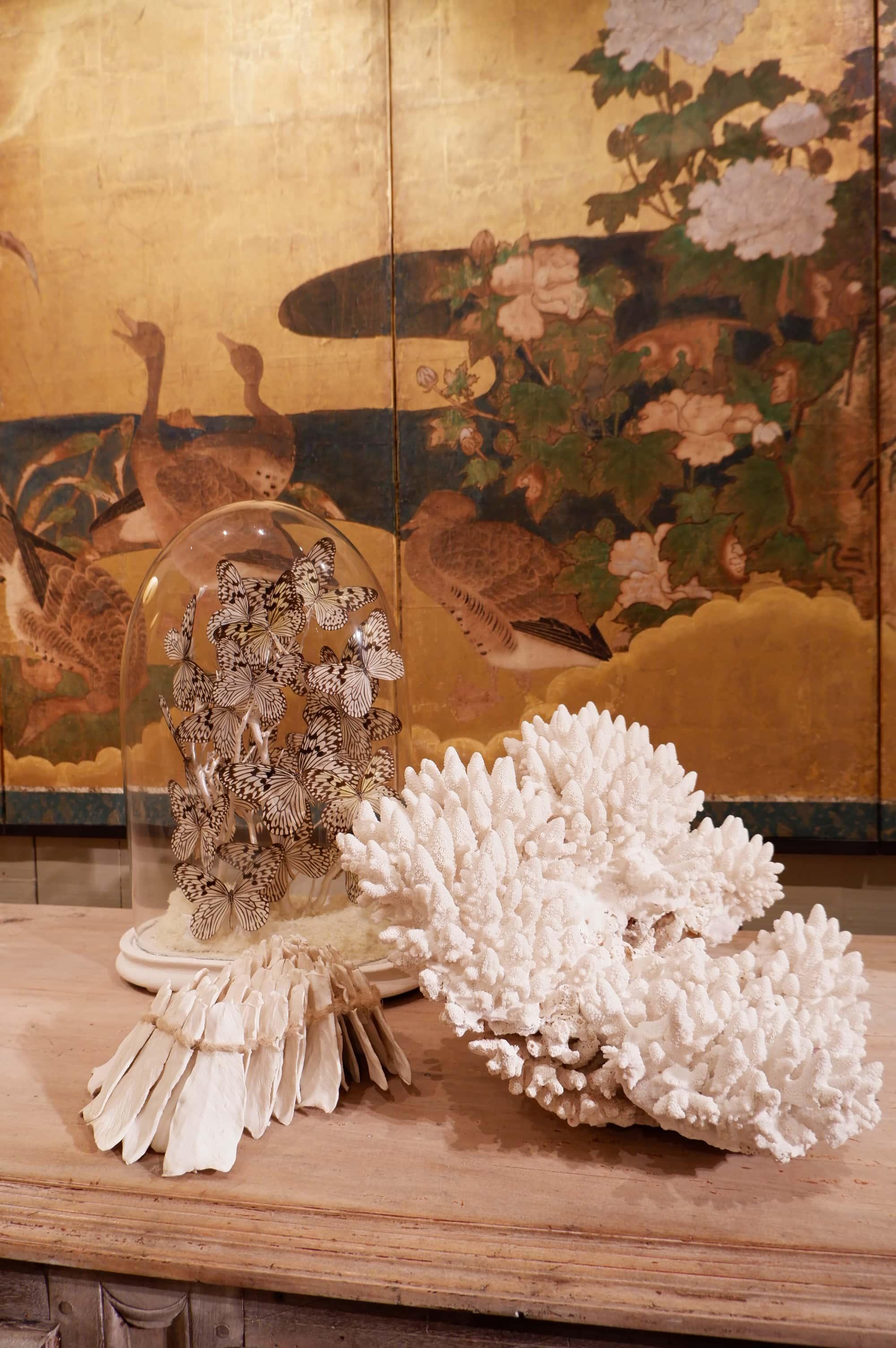 Grande pièce de corail blanc ancien ca.1900